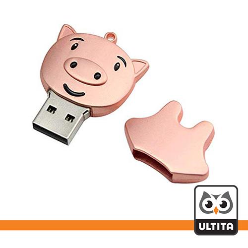 فلش مموری پیگی Piggy