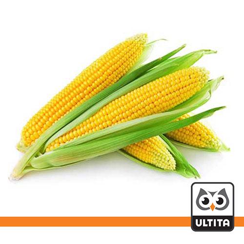 فلش مموری ذرت Corn