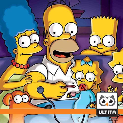 فلش مموری سیمپسون Simpson