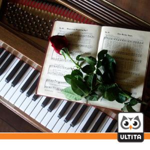 فلش مموری پیانو Piano