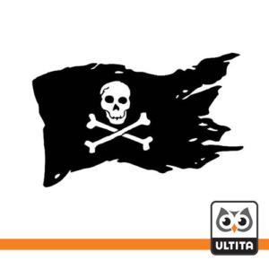 فلش مموری اسکلت Pirate